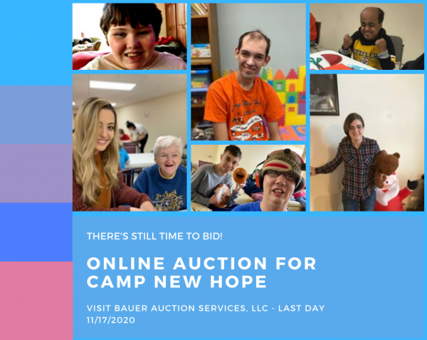 Online_Auction_post_1.png